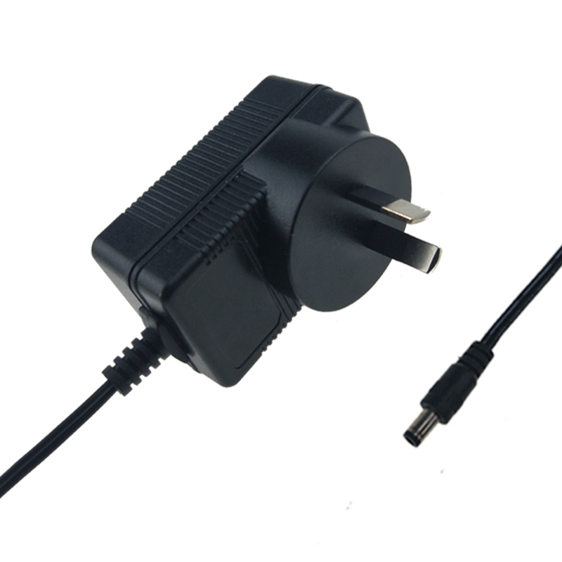 SAA 6V 300mA Ac Adapter